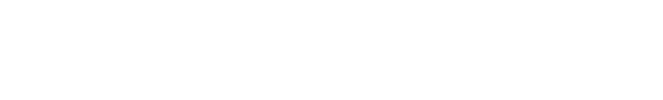 SYNESYS TECHNOLOGIES GROUP